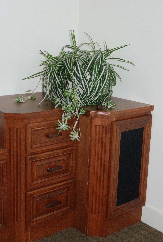 Kitchen Cabinets Salisbury Md